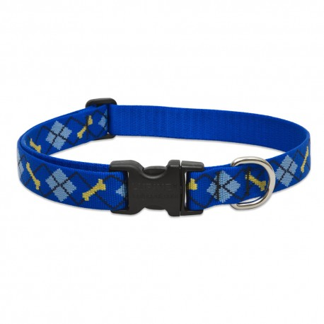 "Collar 1"" Dapper Dog - Envío Gratuito"