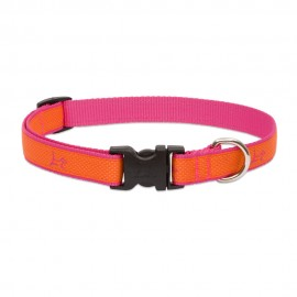 "Collar 3/4"" Sunset Orange"