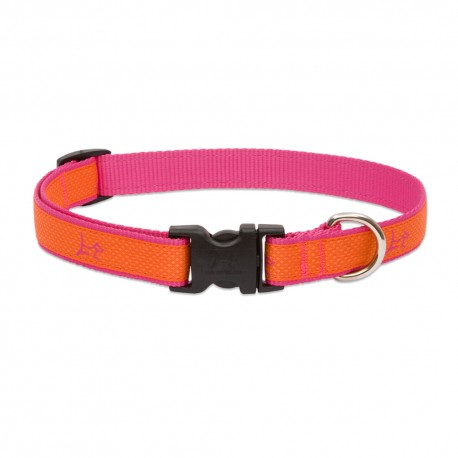 "Collar 3/4"" Sunset Orange - Envío Gratuito"
