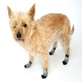 Calcetines para Perro Traction Control Socks Extra Chico
