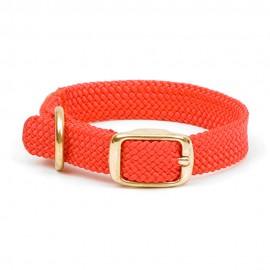 """Collar c/Broche Dorado 9/16"""" x 14"""""""