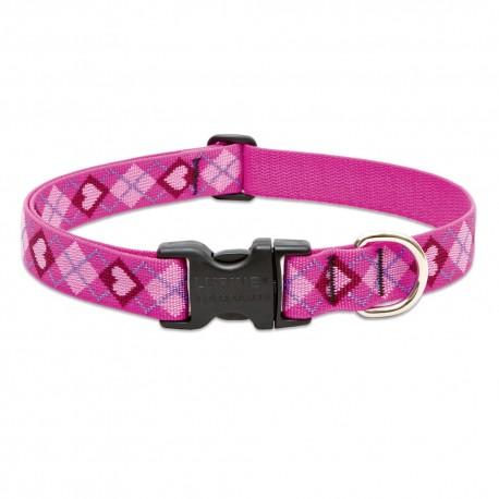 """Collar 1"""" Puppy Love - Envío Gratuito"""
