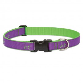 "Collar 1"" Hampton Purple"
