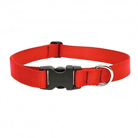 """Collar 1"""" Red - Envío Gratuito"""
