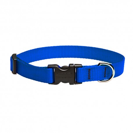 "Collar 3/4"" Blue - Envío Gratuito"