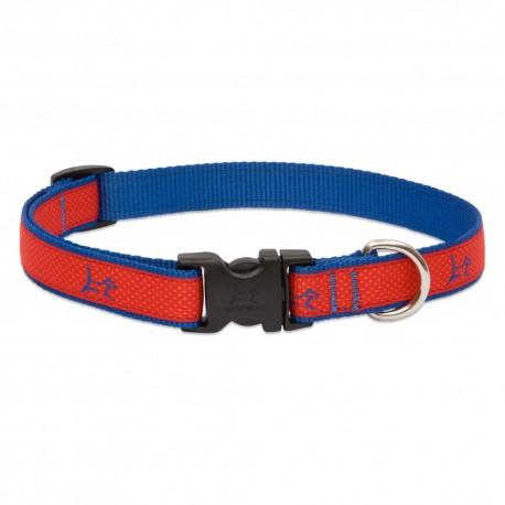 """Collar 3/4"""" Derby Red - Envío Gratuito"""