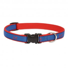 "Collar 3/4"" Newport Blue"