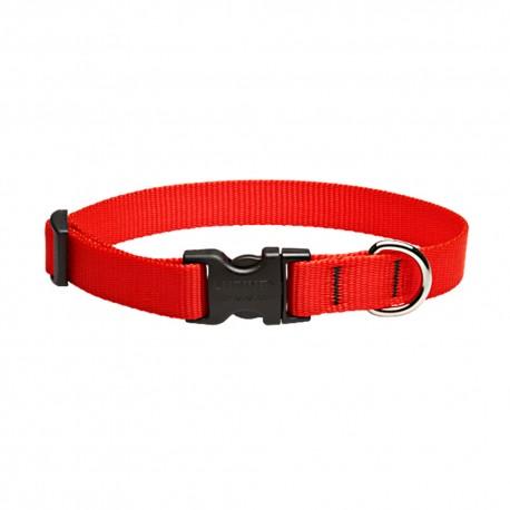 """Collar 3/4"""" Red - Envío Gratuito"""