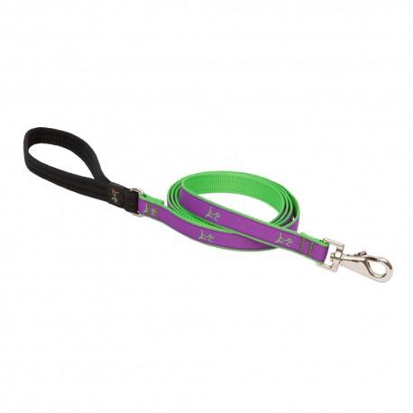 """Correa 3/4"""" Hampton Purple - Envío Gratuito"""