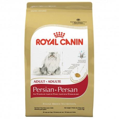 Persian Adult - Envío Gratuito