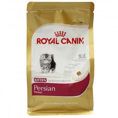 Persian Kitten - Envío Gratuito
