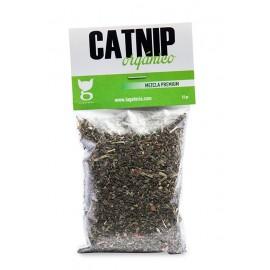 Catnip Orgánico
