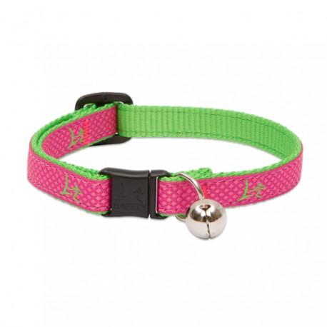 """Collar con Cascabel 1/2"""" Bermuda Pink - Envío Gratuito"""