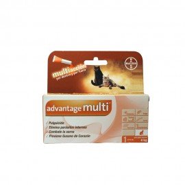 Advantage Multi® Gato